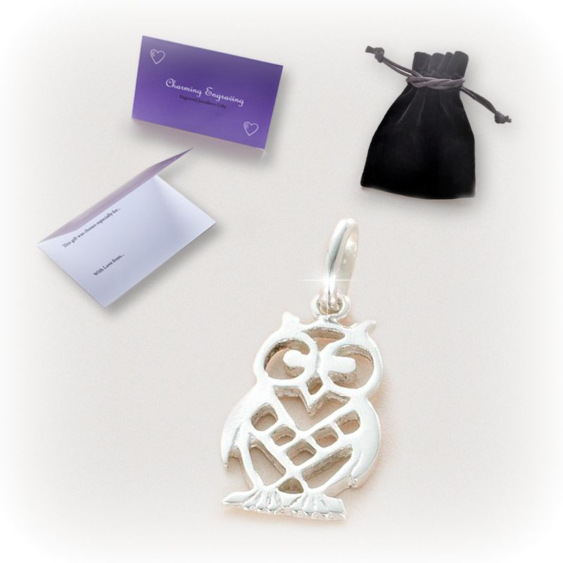 Silver Owl Charm with Gift Packaging